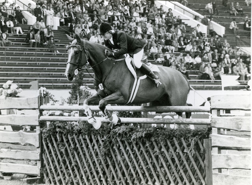 William Hunter Equestrian Plain Horse Lead Rope in Purple